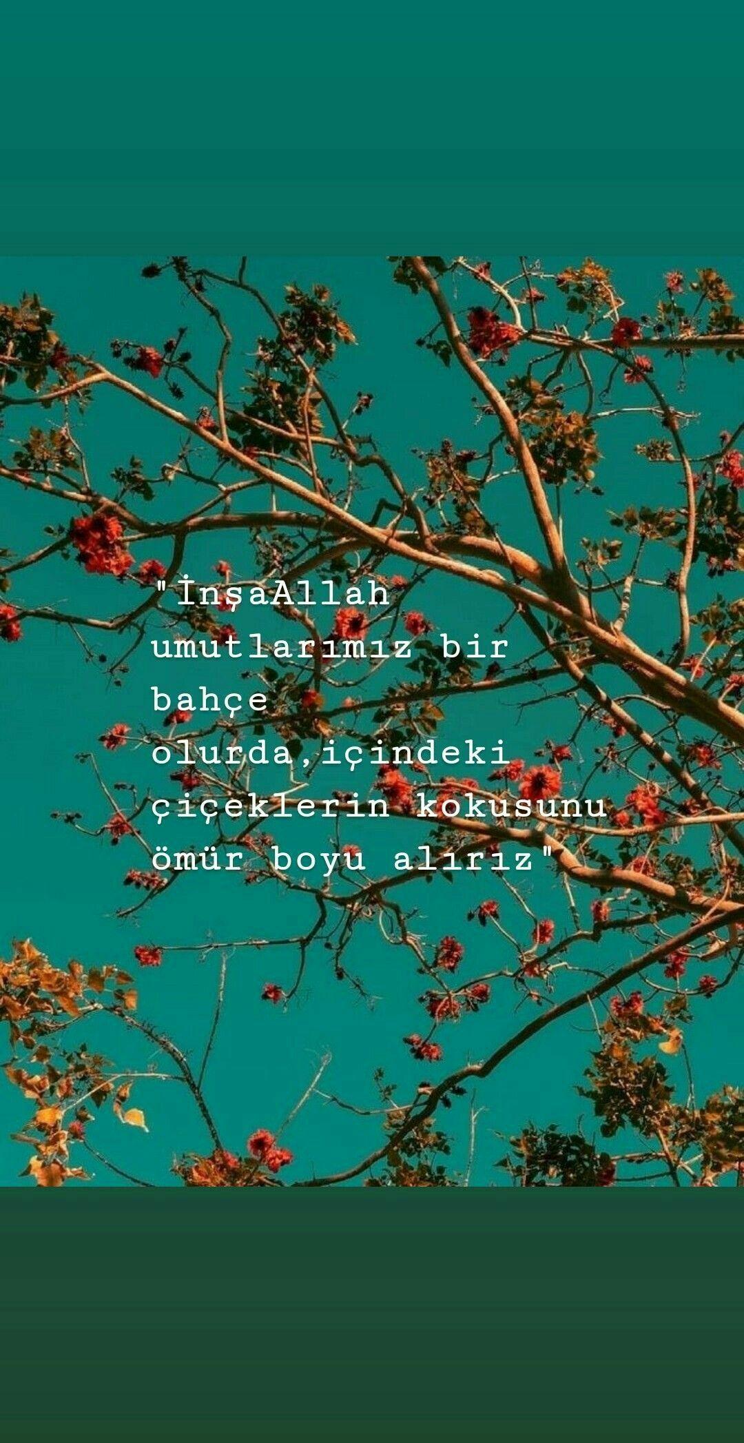 🍁🍁🍁   – Sabır Şükür Dua Nasip