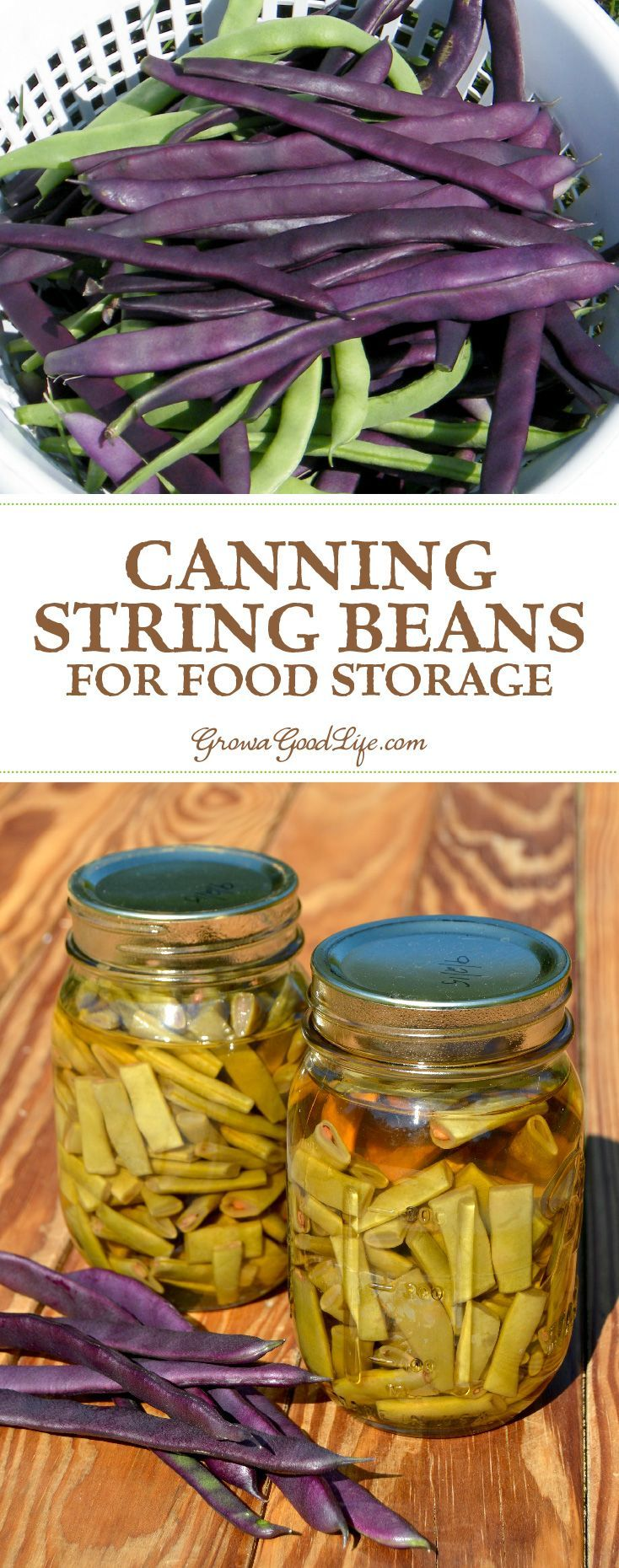 Canning green beans for food storage recipe can green