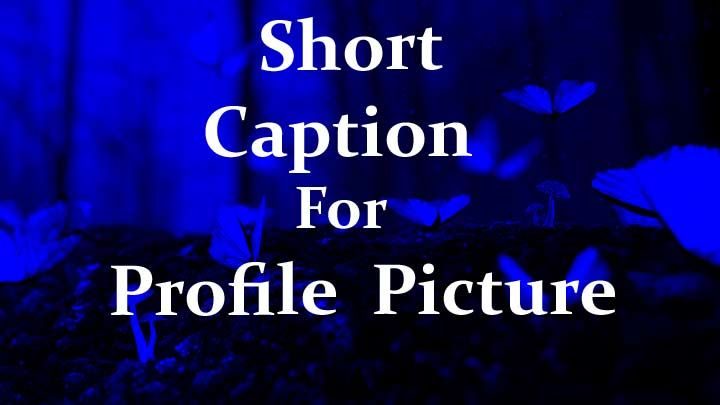 caption for facebook profile picture selfie