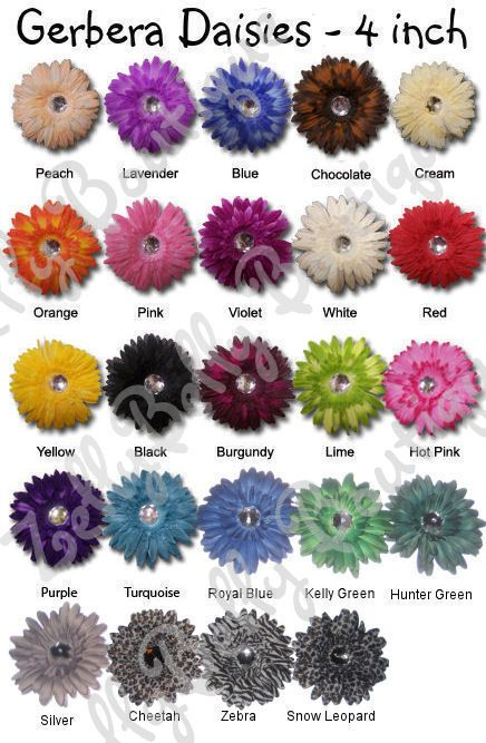 Gerbera Daisy Color Chart Gerbera Daisy Colors Gerbera Daisy Colorful Flowers