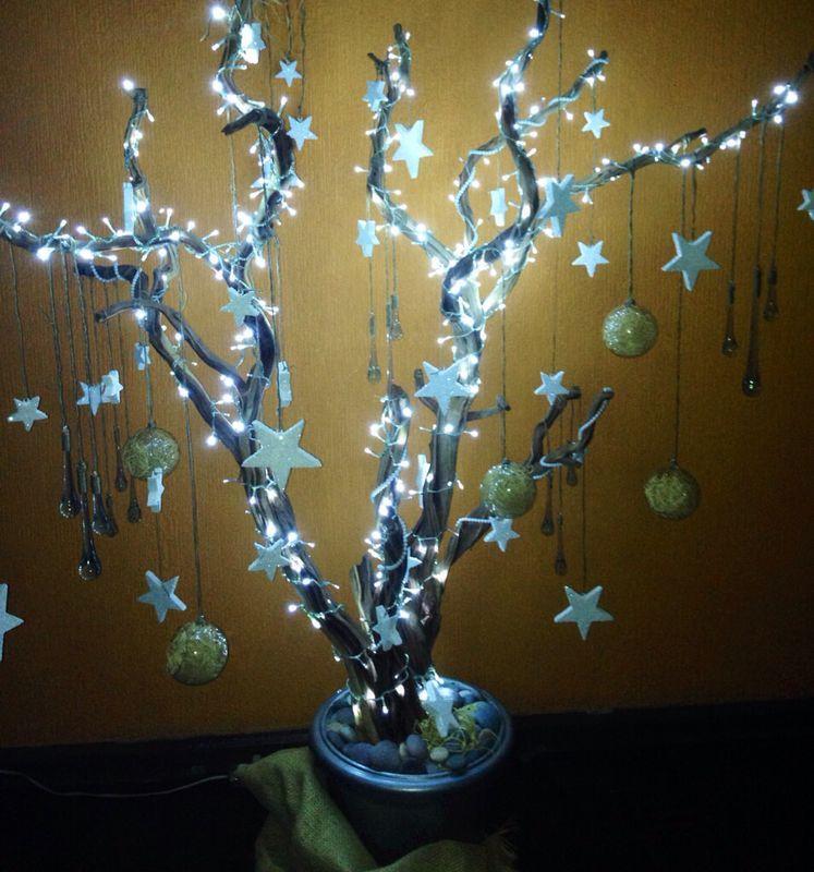 My árbol
