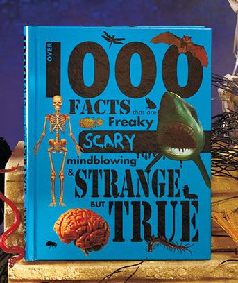 Over 1000 Fact Books for Kids are filled with all the odd tidbits you ever wanted to know...and some you probably didn't! Find out all that's weird and wonderful in these amazing books covering a variety of topics. Over 1000 Disgusting Facts features facts about things, people, places and animals that are simply disgusting. Over 1000 Strange Facts includes facts that are freaky, scary, mindblowing and strange but true. Both hardcover books have 224 pages filled with illustrations. 10-1/4