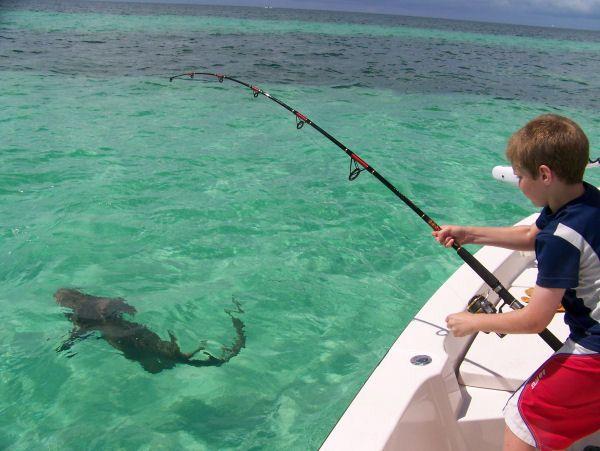 Fishing deep sea fishing in miami beach florida miami for Miami beach fishing charters