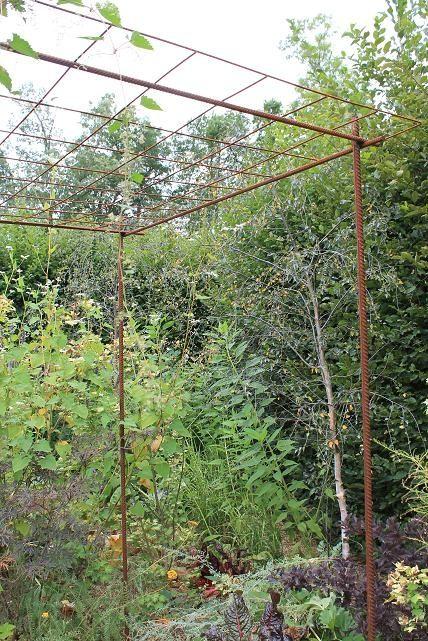 S 39 am nager un espace pour plantes grimpantes avec du fer for Ou acheter des plantes