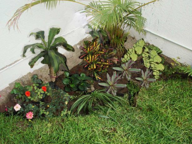 jardines sencillos y economicos jard n pinterest