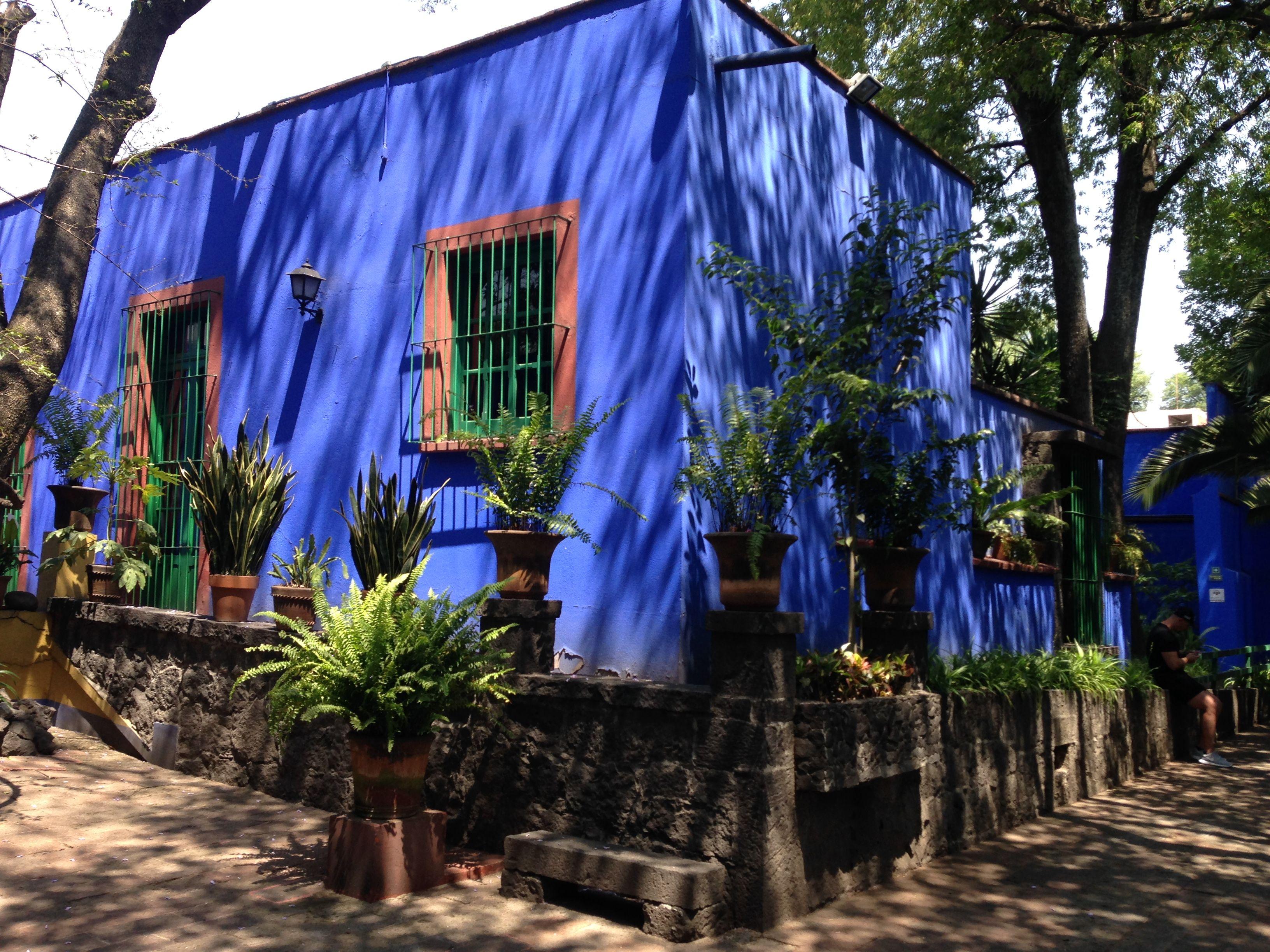 Museo Casa Estudio Diego Rivera Y Frida Kahlo Visita La Casa Azul De Frida Kahlo Deslumbrante Caminata Mexicana Acompañada De Naturaleza Color Road Structures