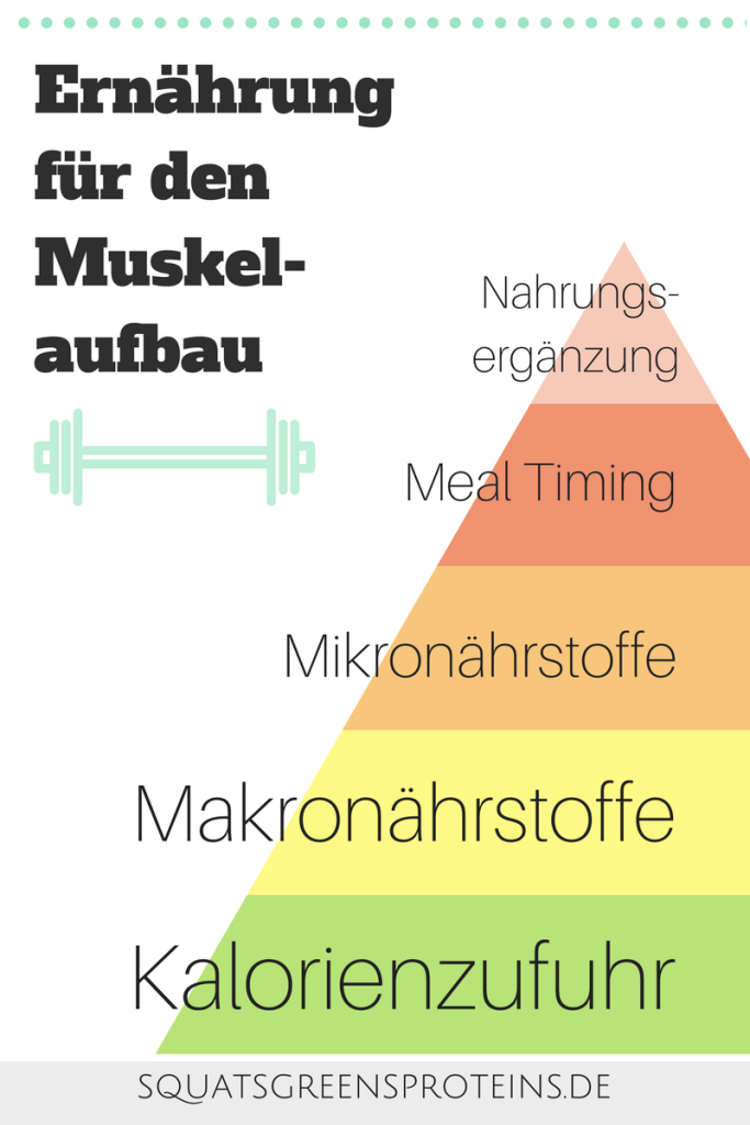 nahrungsergänzungsmittel zum abnehmen und muskelaufbau