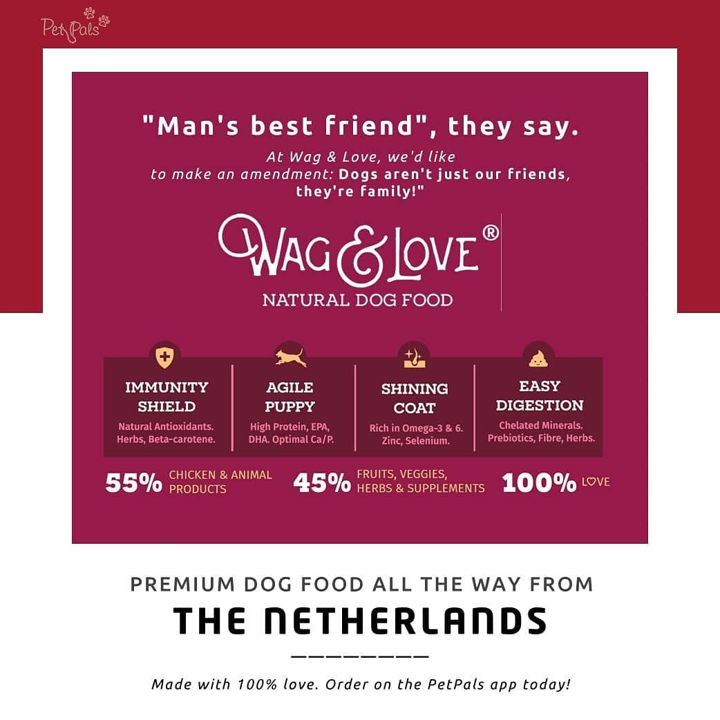 What makes Wag & Love special? We can give you a thousand