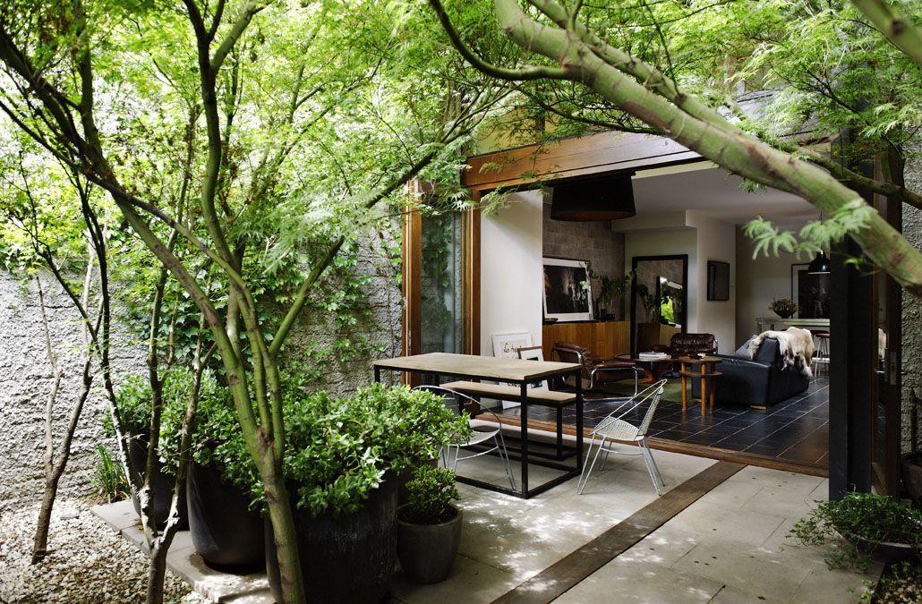 Urban Backyard