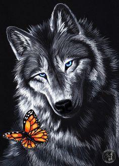 Photo of Alpha Wolf