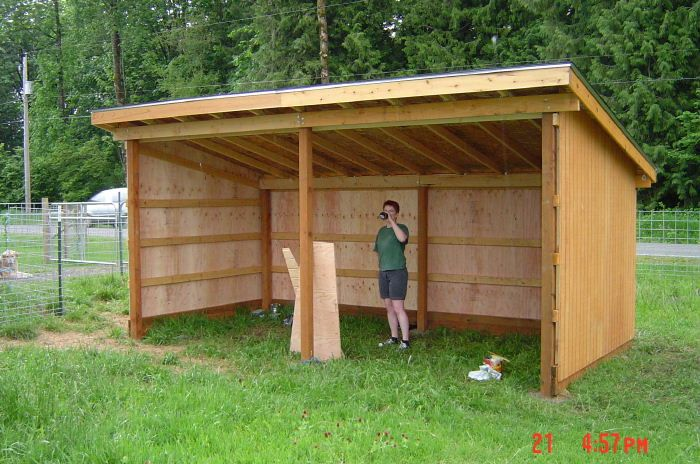 Horse shelter plans shed plans pinterest horse for Three sided shed plans