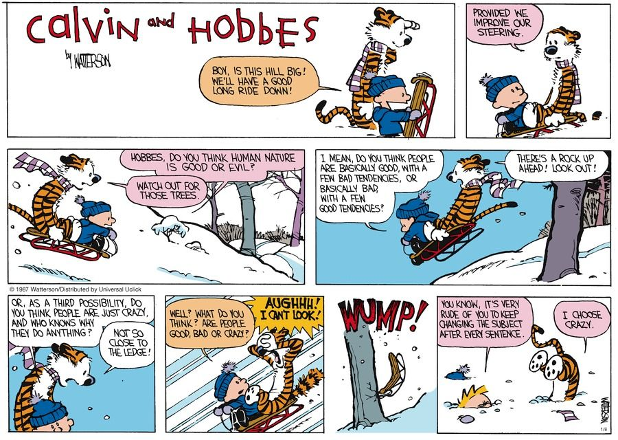 Calvin And Hobbes By Bill Watterson For January 08, 2017