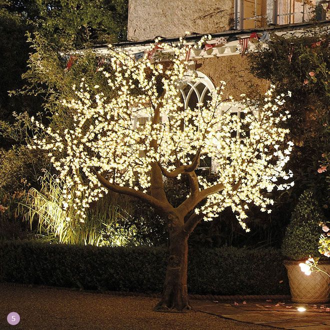 Illuminated Decorative Led Tree For An Outdoor Wedding For