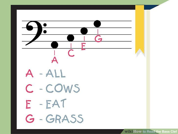 How to read the bass clef learning bass bass guitar