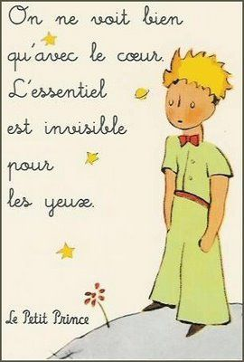 El Petit Príncep En Francès El Principito Frases Refranes
