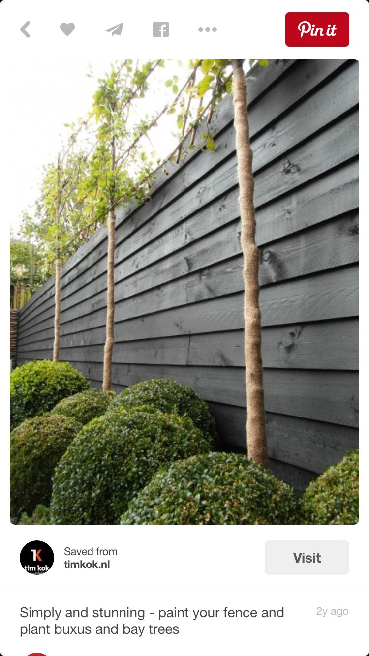 dark grey fence beachwood midcentury modern garden pinterest jardins palissade et. Black Bedroom Furniture Sets. Home Design Ideas