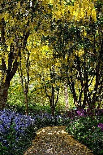A Secret Path, VanDusen Botanical Garden, Vancouver, BC, Canada