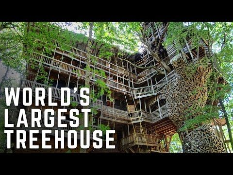 Take A Virtual Tour Of The Worldu0027s Largest Treehouse Ever Built | Spirit  Science