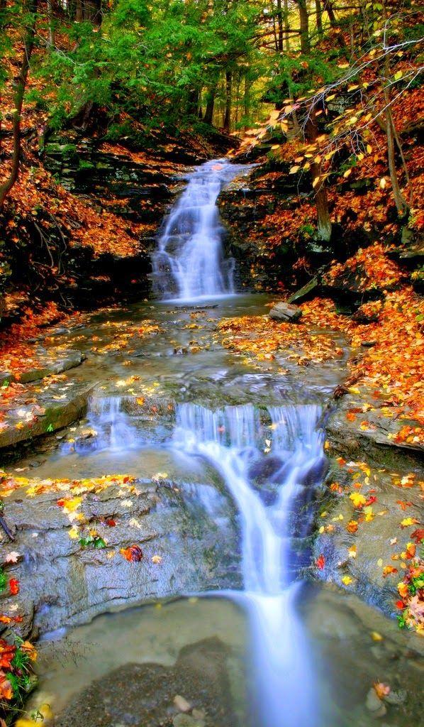 Letchworth State Park , Castile, New York. #letchworthstatepark