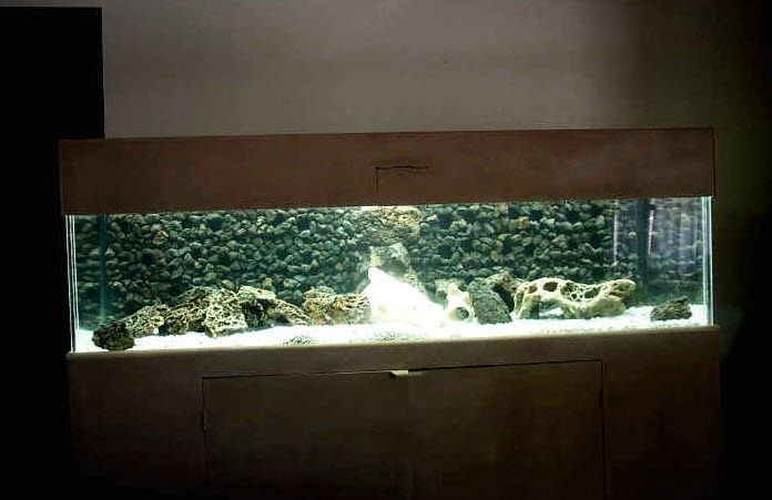 Gutters Aquarium Cave Background Petdiys Com Fish