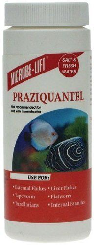 microbe lift praziquantel powder 3 5 oz by ecological laboratories