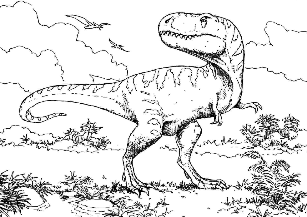 image result for t rex dinosaur coloring pages