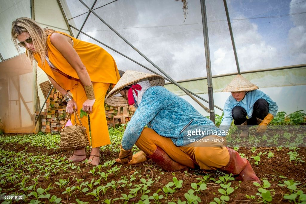 Queen Maxima of the Netherlands visits farm of Xuan Toan on May 30, 2017 in D Lat, Vietnam. The farm is supported by the Horti Dalat program that helps farmers with the growth of their business. Queen Maxima is in Vietnam for an three day visit in her capacity as United Nation's Secretary-Generals Special Advocate for Inclusive Finance for Development.