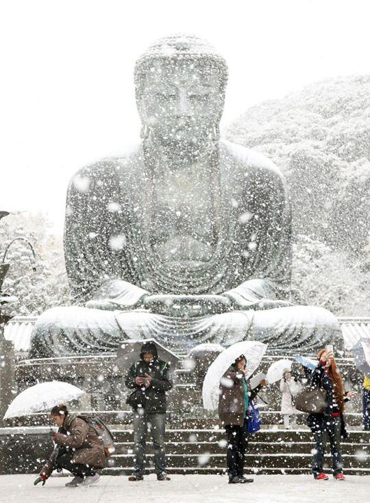 November snow in Kamakura