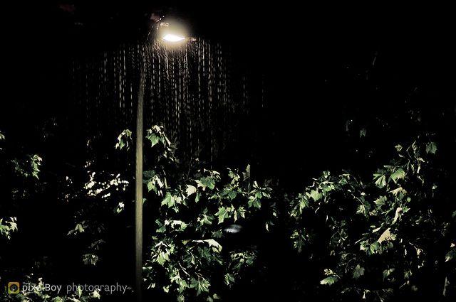 365 - D97  Hard Rain