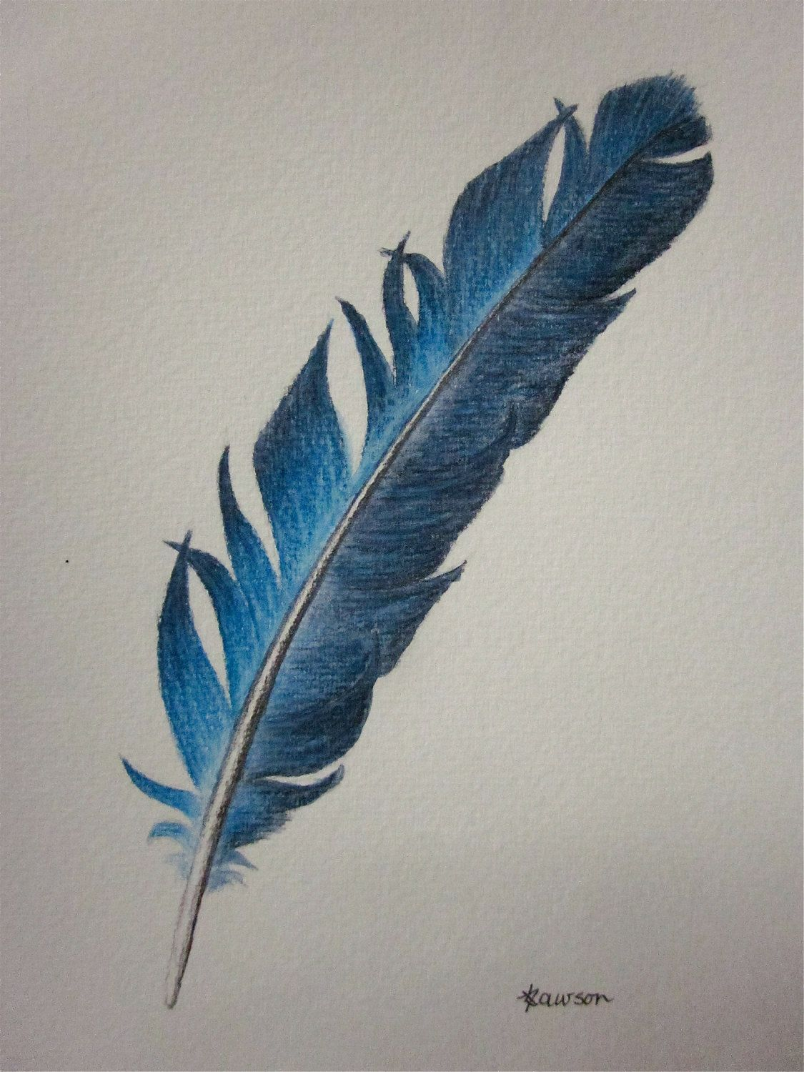 vivid blue feather original coloured pencil drawing caged in