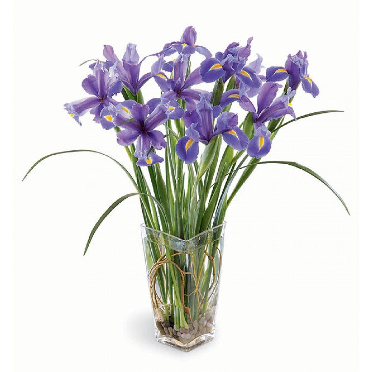 Las flores son un básico del día de las madres, opta por algo diferente y regálale unas preciosas Iris. Le van a encantar :) #TheTaiSpa #Regalos #Mamá