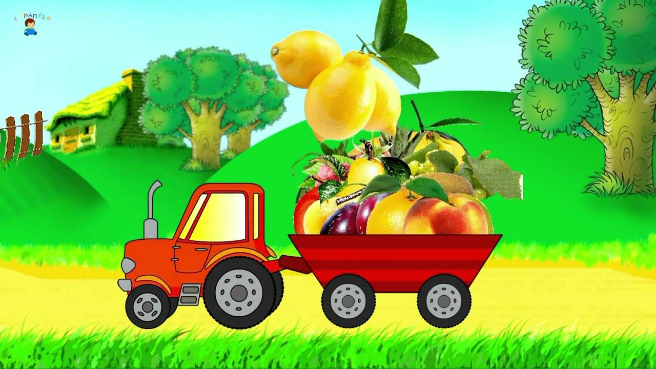 картинки машина с овощами переехала столицу, чтобы