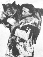 Balto, lead dog of the final stretch of the 1925 serum run, and Leonard Seppala, renowned dog breeder and trainer, were part of the sled dog team that delivered life-saving antitoxin serum to Nome, Alaska.