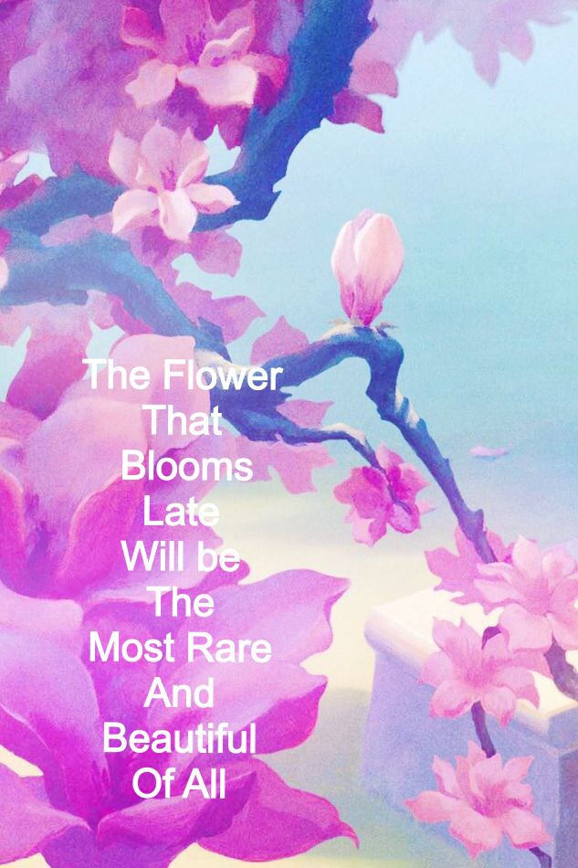 Mulan Blossom Quote Dis Tat Disney Wallpaper Wallpaper Iphone