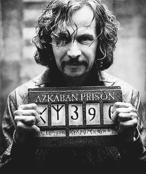 Ata-Boy Harry Potter Have You Seen Sirius Black 2.5 x 3.5 Magnet for Refrigerators and Lockers
