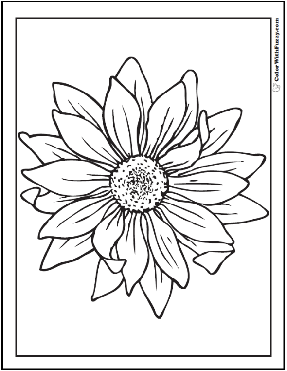 Sunflower Drawing Black And White Google Search Henna
