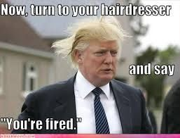 Funny Hairdresser Jokes Google Search