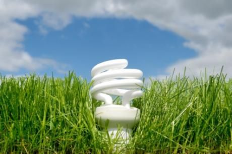 Swap your incandescent light bulbs for energy efficient alternatives!