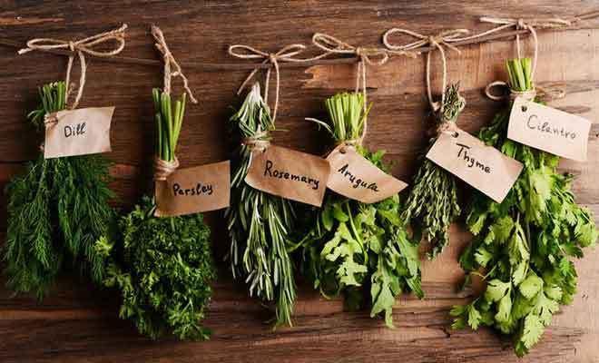 Secar Plantas Medicinales A Mano Es El Método Más Utilizado Y Además Es De Los Modos Más Fácil Secado De Hierbas Plantas Medicinales Jardín De Hierbas Interior