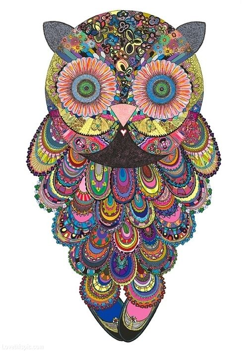 Psychedelic Owl colorful art wild painting owl