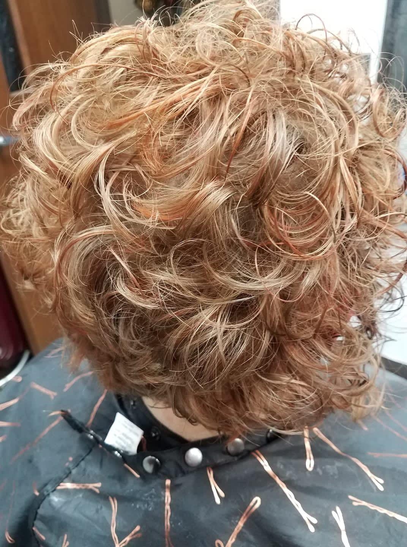 Short Naturally Curly Hair Highlights And Lowlights Hair Highlights Hair Highlights And Lowlights Curly Hair Styles Naturally