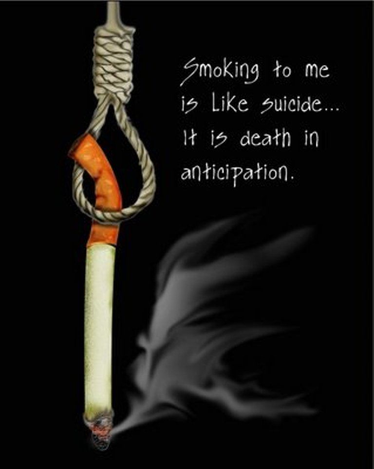 Anti Smoking Quotes Adorable Antismoking Advertising Design  Favourite Ads  Pinterest  Anti