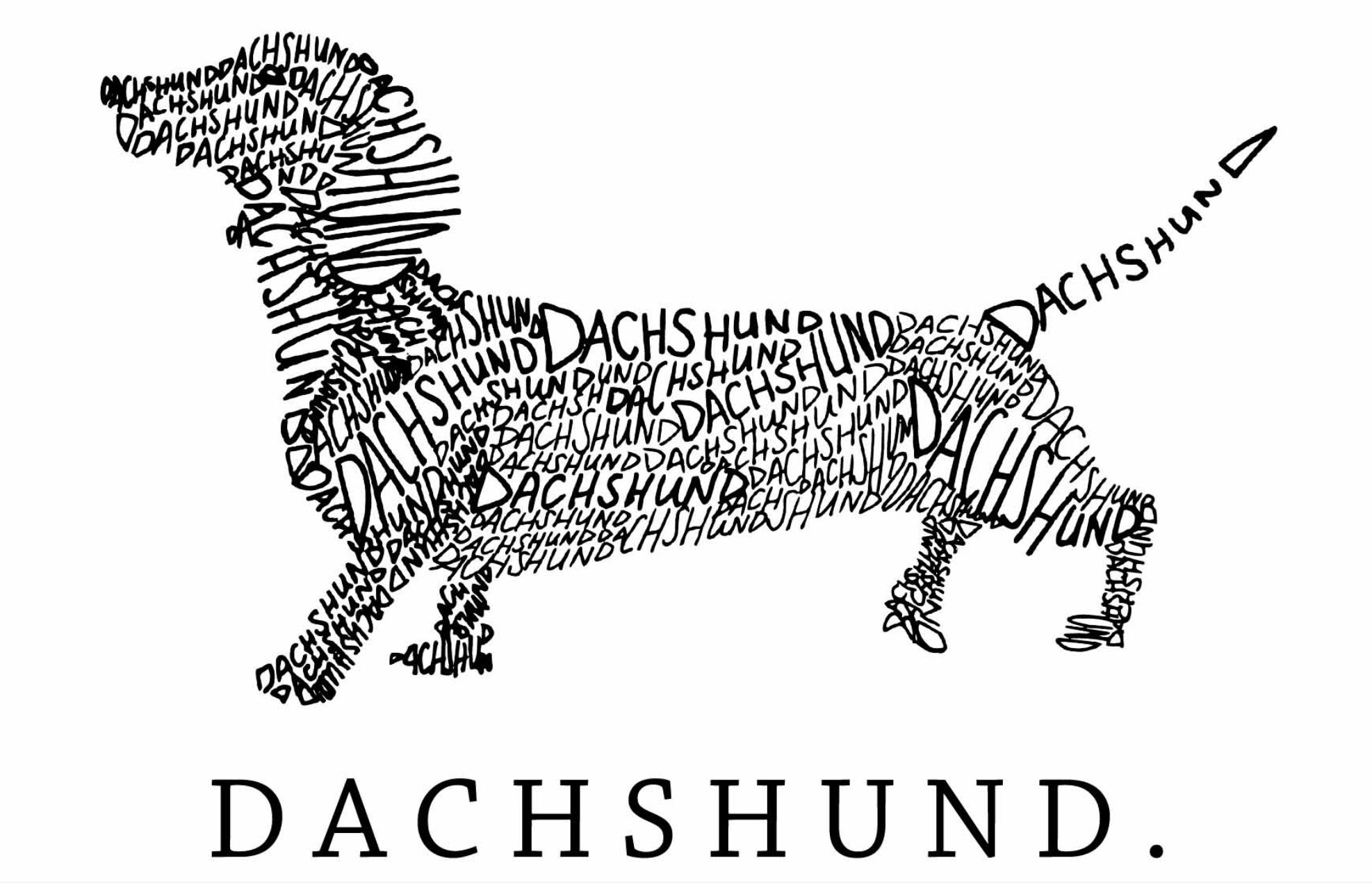 Pin by April Grenier on Crafty (With images) Dachshund