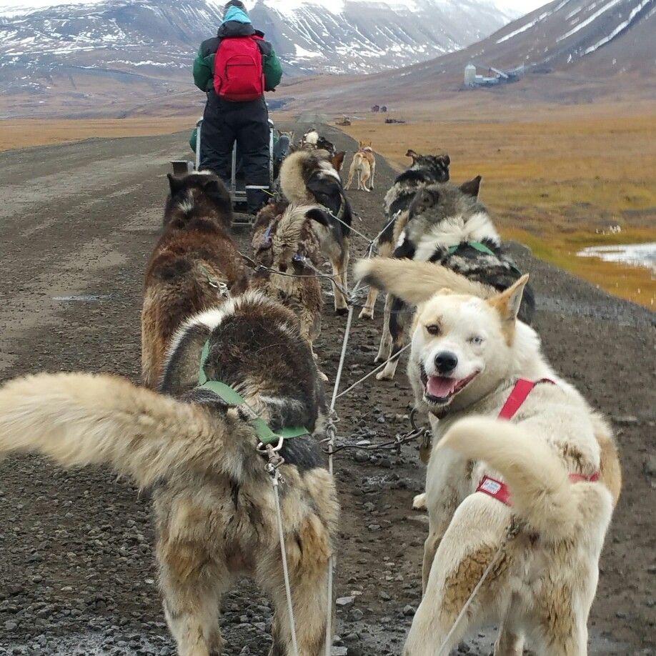 Longyearbyen. Adventdalen.