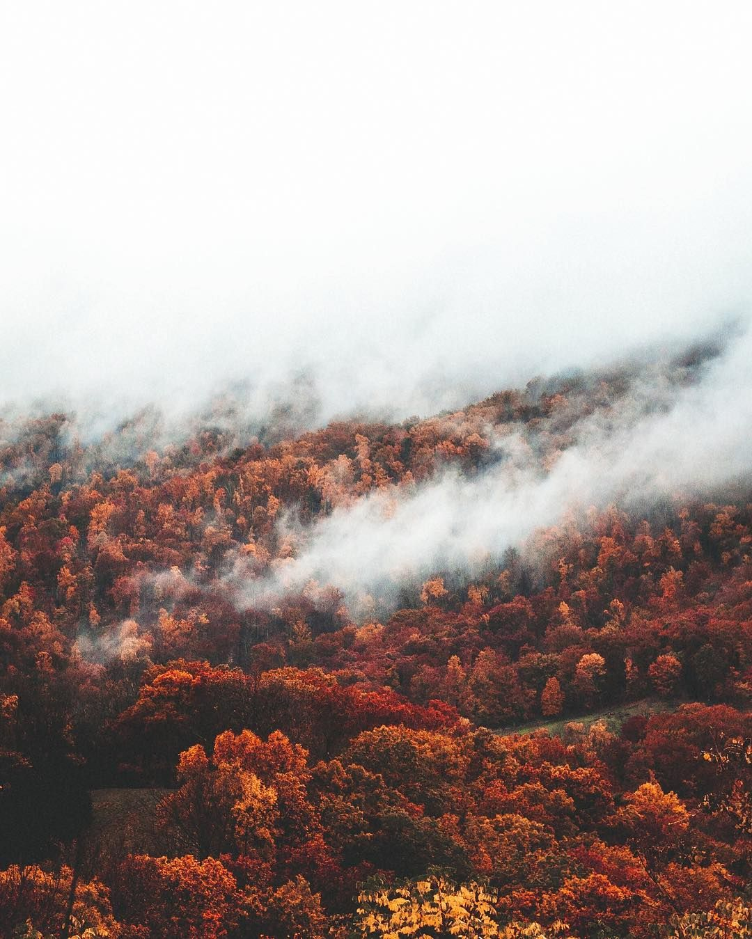 Épinglé sur Fall ~ Autumn ~ Mabon