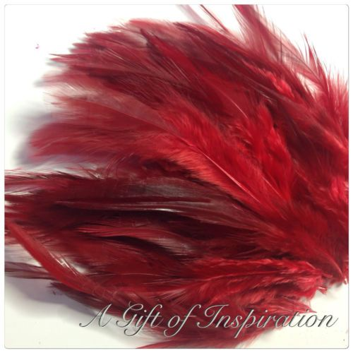 Pack-of-20-Medium-RED-rooster-feathers-9-15cm-for-craft-millinery-fly-fishing