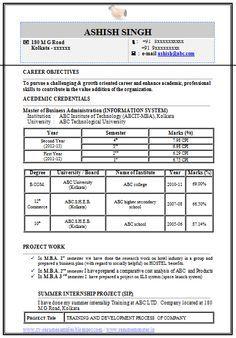 Professional Curriculum Vitae  Resume Template For All Job