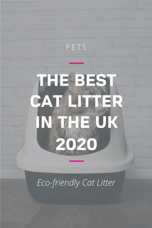 The Best Cat and Kitten Litter UK 2020 in 2020 Best cat