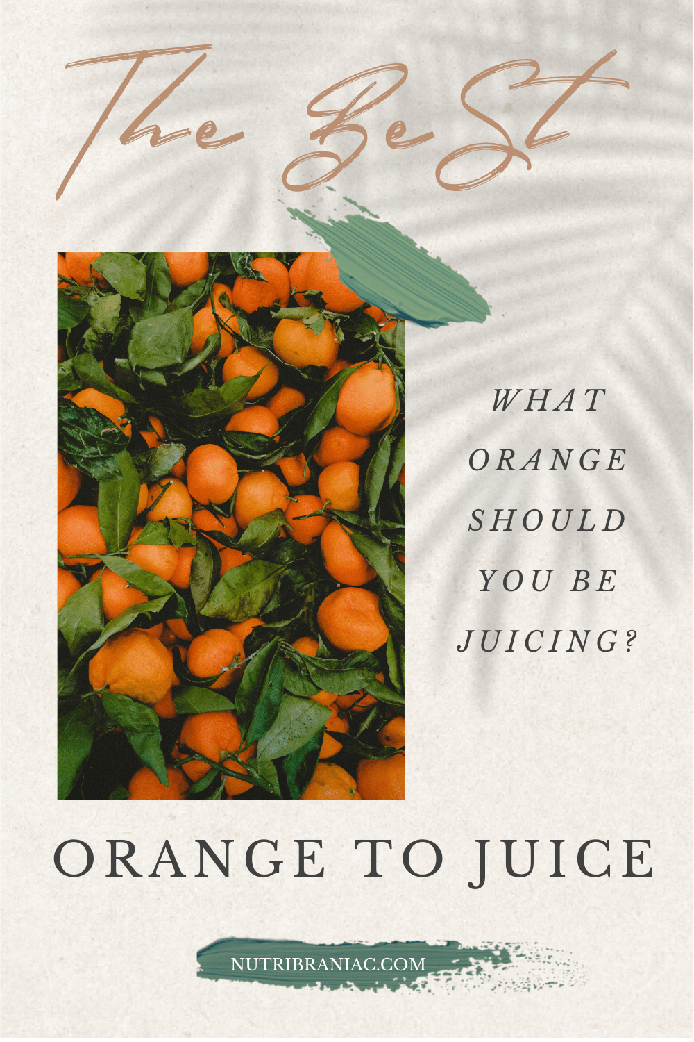 6a845ead5f6f48d308a8b609f7e39e5b - How To Get The Most Juice Out Of Oranges