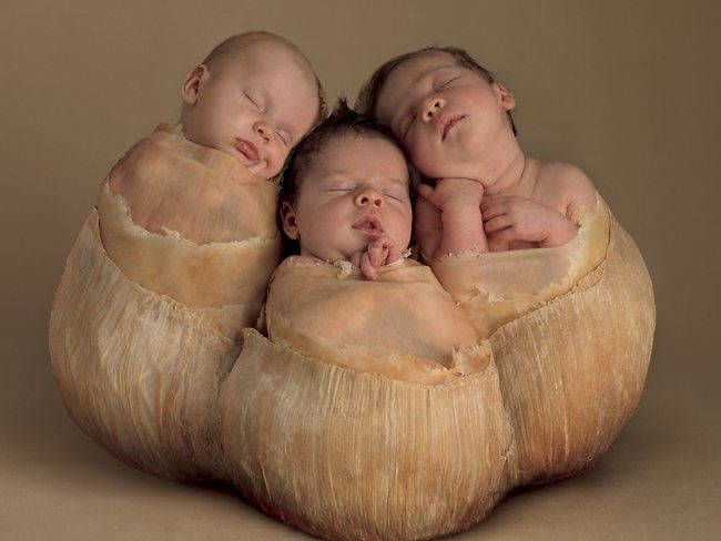 Anne geddes new work is distinctly different from her previous body of work which featured